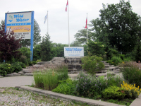 Toronto Amusement Parks - Wild Water Kingdom