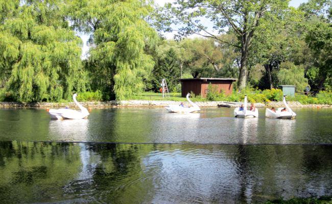 Centreville Amusement Park - Swan Ride