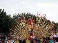Toronto Events - Caribbean Carnival Toronto Parade